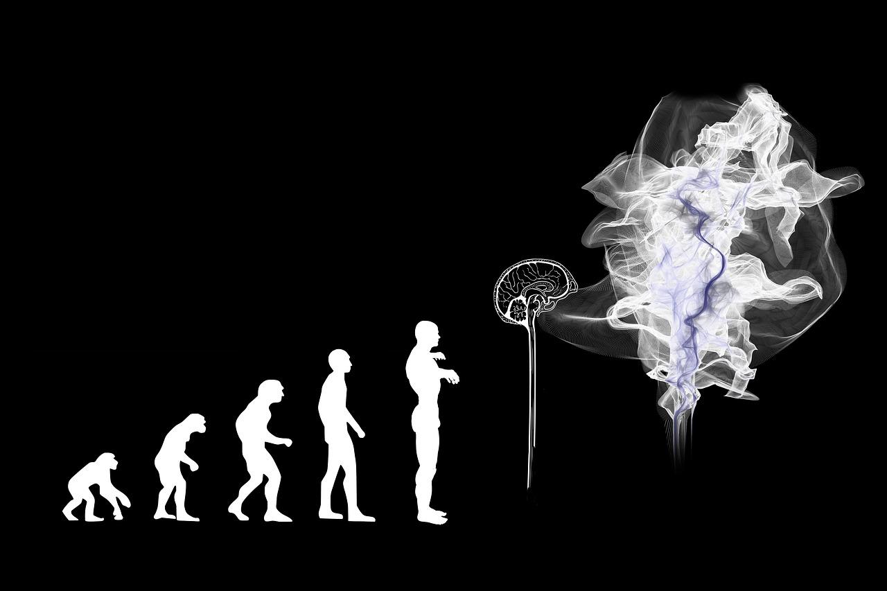 【衝撃】ダーウィンが提唱した、人類の進化論が実は嘘だった?